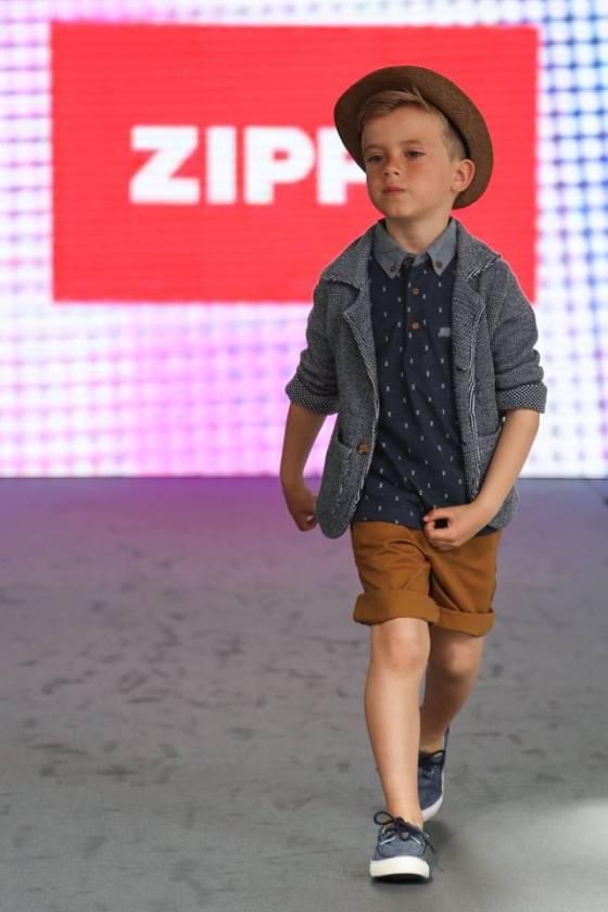 zippy 3